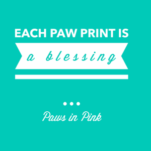 Paw print is a blessing