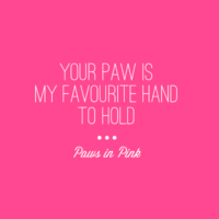 Your paw is my favourite hand