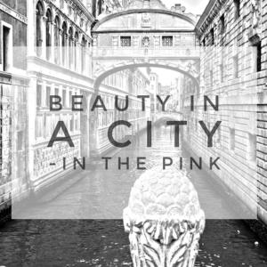 Beauty in a city
