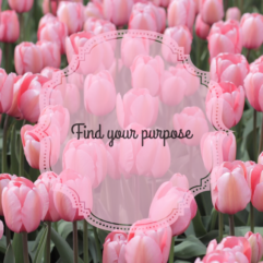 Finding your life purpose.