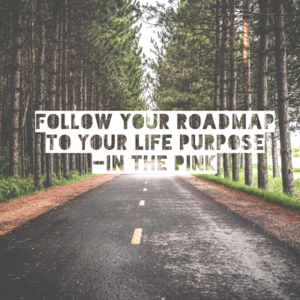 Follow your roadmap