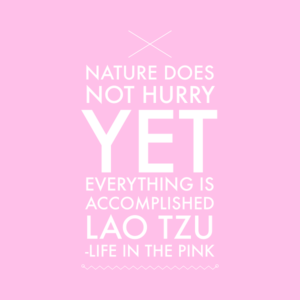 """Nature does not hurry yet everything gets accomplished"" Lao Tzo"